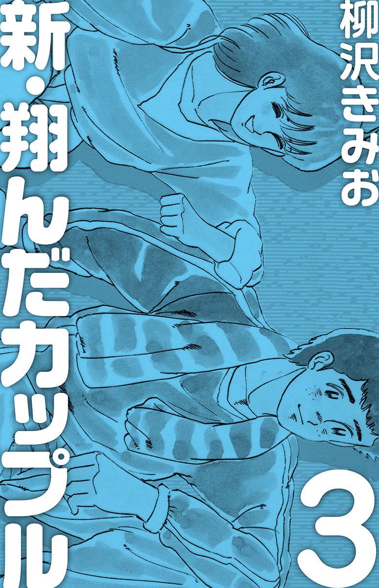 新・翔んだカップル(第3巻)