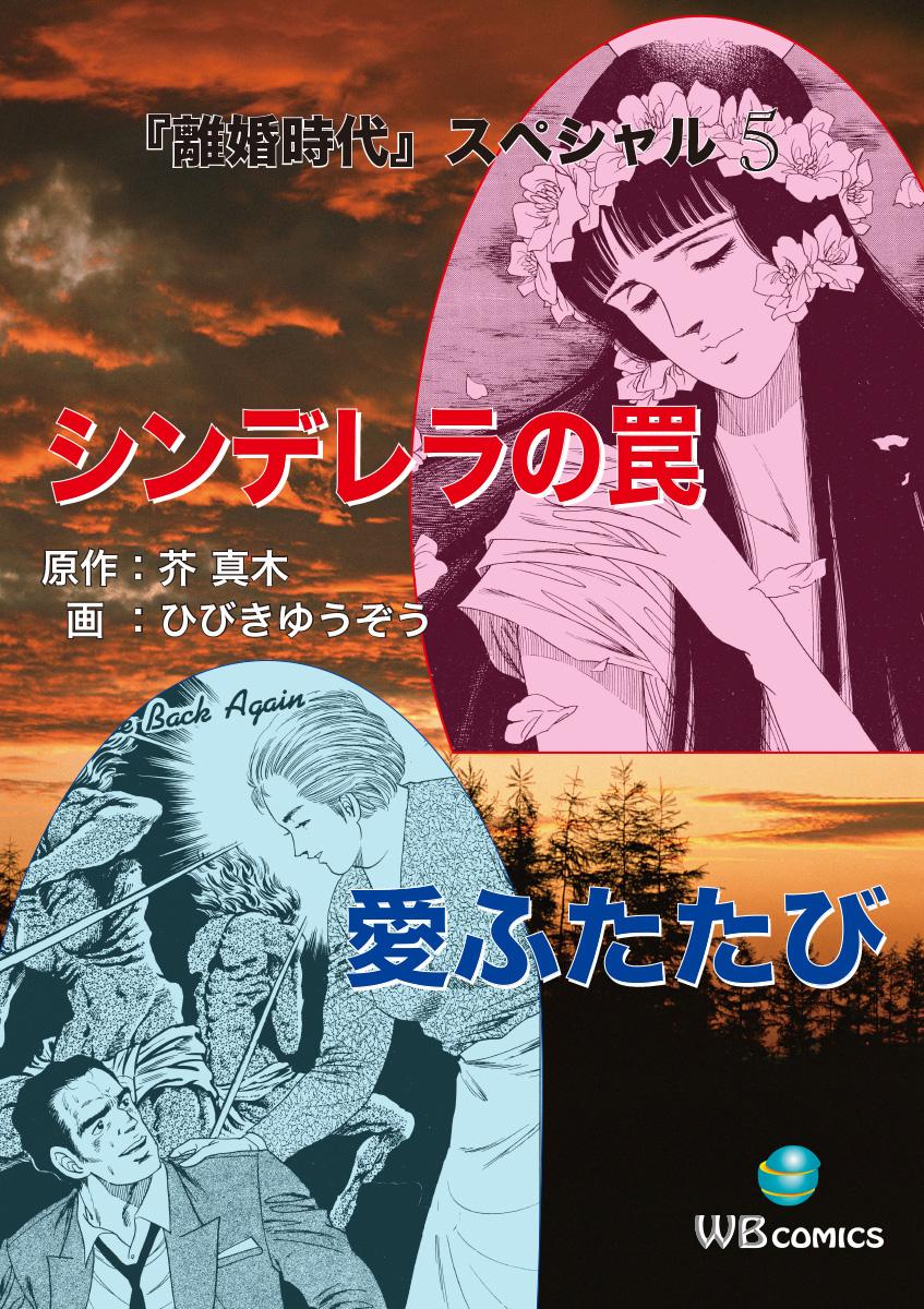離婚時代スペシャル(第5巻)